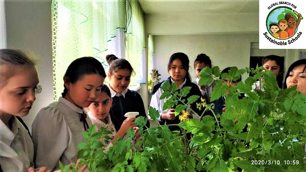 Буденовская школа вошла в число победителей Глобального поиска устойчивых школ